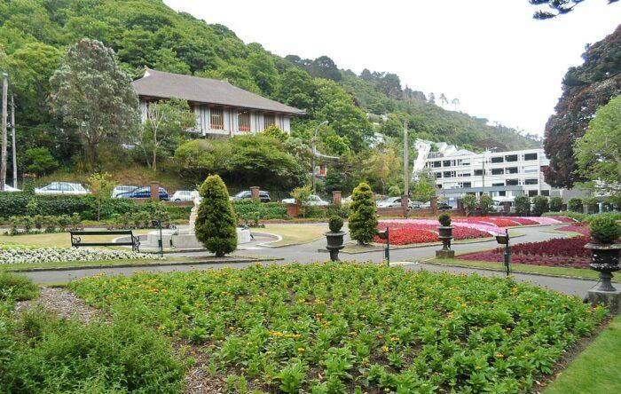 Wellington Botanic Garden NZ by Pear285 via Wikipedia CC