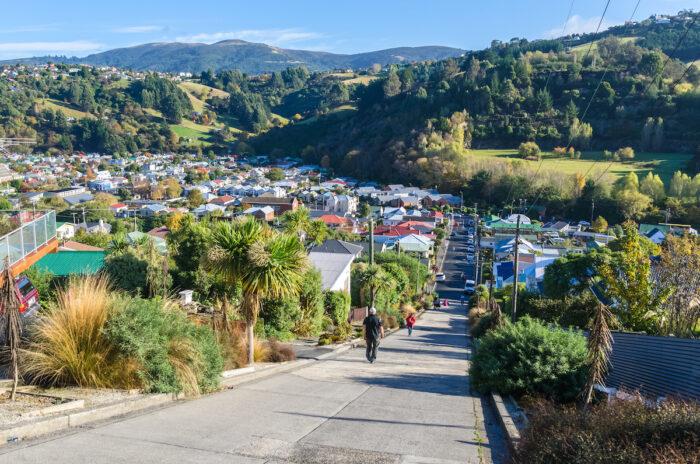 Baldwin Street, located in Dunedin,New Zealand is the world steepest street in the world photo via Depositphotos