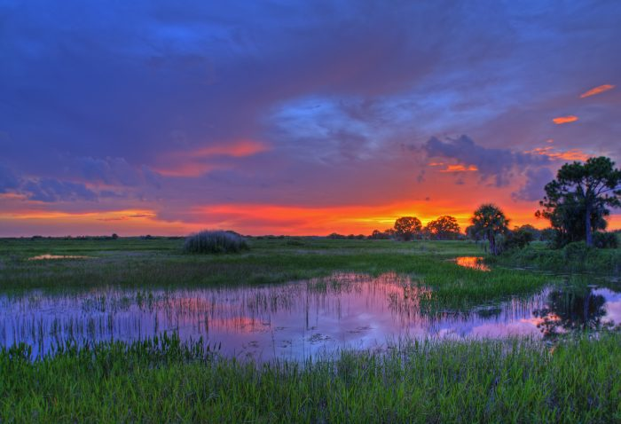 Everglades National Park Photo via Depositphotos