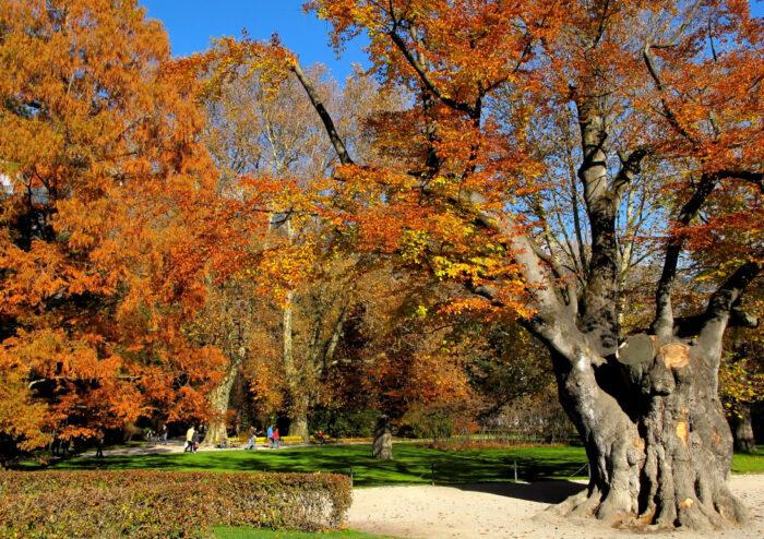 Hofgarten (Court Garden) in Innsbruck, Austria by Bbb via Wikipedia CC