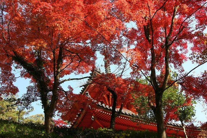 Mitaki-Dera Temple via Wikipedia CC