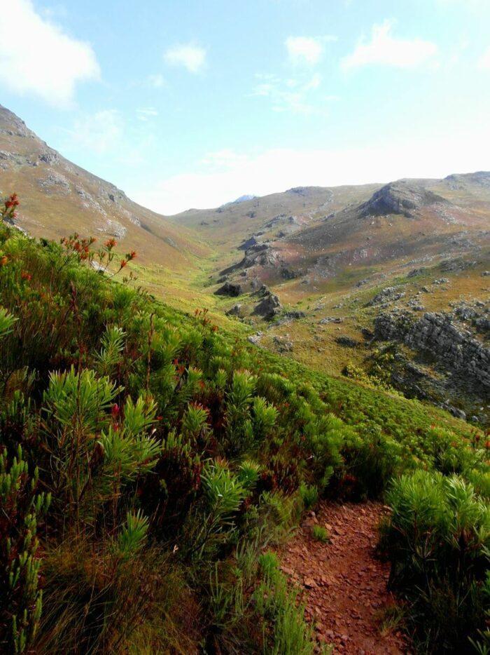 Mont Rochelle Nature Reserve photo via Facebook Page