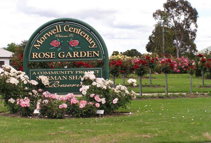 Morwell Centenary Rose Garden photo via Facebook page