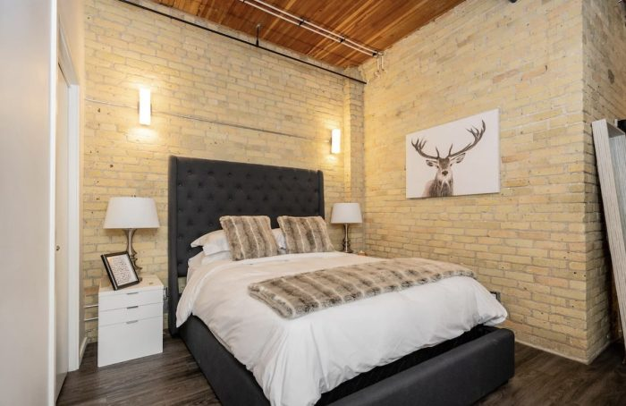 Luxury Airbnb in Winnipeg