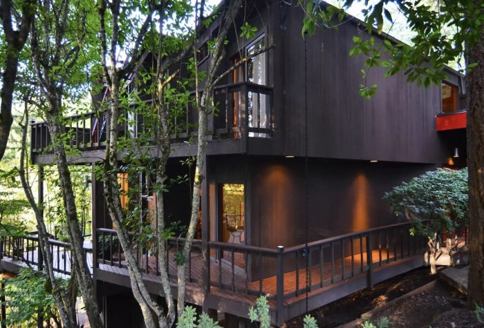 Treehouse Library Guest Suite Airbnbs in Eugene OR