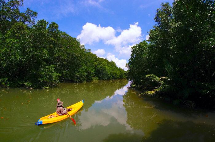 Jason River in El Nido