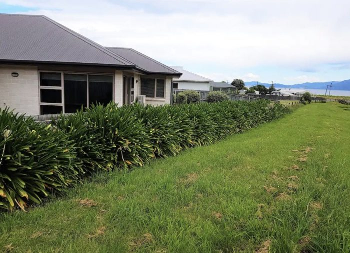 Kaikoura Airbnb Aparment near the Beach