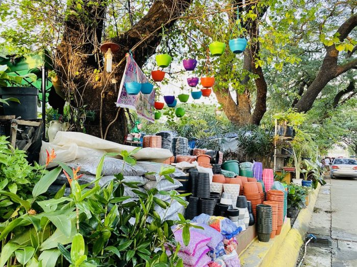 Plant and Gardening Supplies at Quezon City Circle