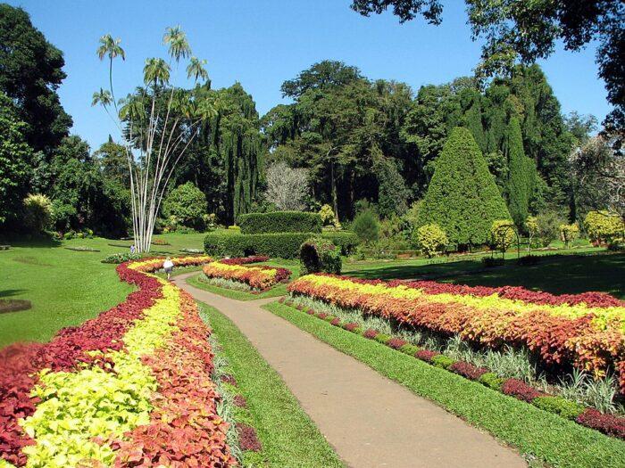 Royal Botanical Gardens, Peradeniya por Bernard Gagnon a través de Wikipedia CC