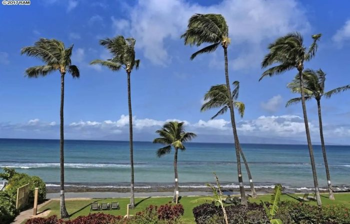 1 bedroom condo in Lahaina near the beach