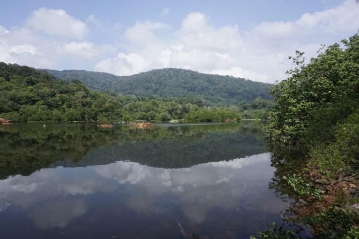 Scenic view of Taiping Lake Garden, located at Perak, Malaysia. photo via Depositphotos