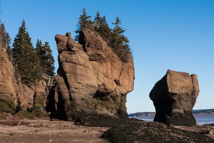 Tilted layers of sandstone at Hopewell Rocks by Maciej via Wikipedia CC