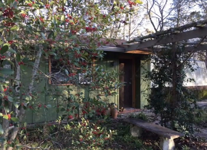 Macon GA The Greenhouse Airbnb