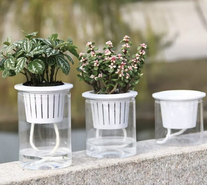 Clear Automatic Water Absorption Self Watering Hydroponic Flower Pot Planter