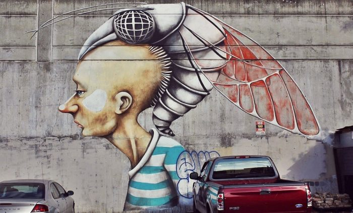 Street Art - Things to do in Austin Texas