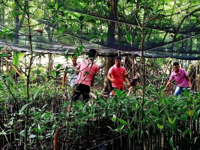 Community-based tourism program at The Sabang Mangrove River, Puerto Princesa, Palawan spearheaded by The Sabang Mangrove Paddle Boat Tour Guide Association Inc. [photos courtesy of the Department of Tourism]