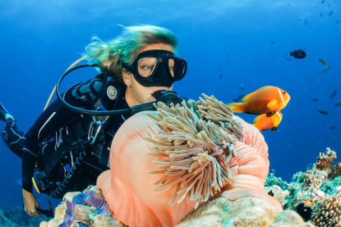 Diving by Sebastian Pena Lambarri photo via Unsplash