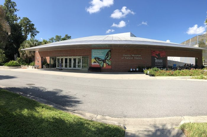 Florida Museum Of Natural History by Todd Van Hoosear via Wikipedia CC