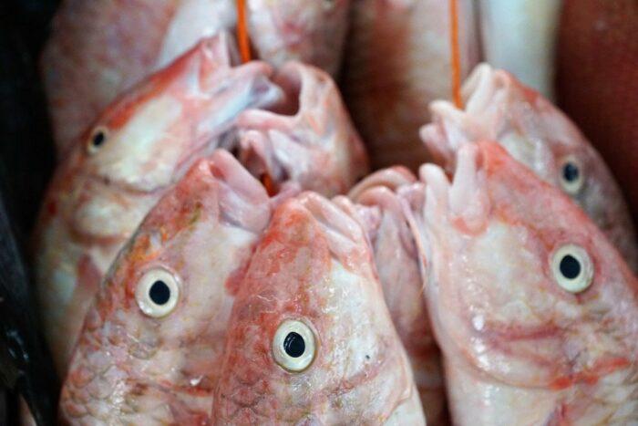 Fresh Catch at Victoria Market Seychelles