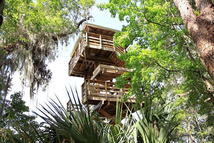 Paynes Prairie Preserve State Park Observation Tower by Muon via Wikipedia CC