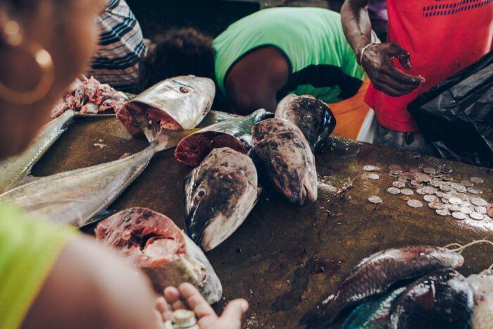 Seychelles Market Street by Nenad Radojcic via Unsplash