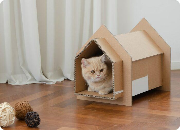 Samsung - Cat Tunnel