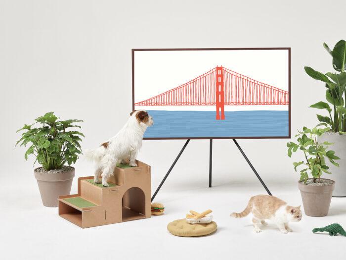 Samsung - Pet Stairs
